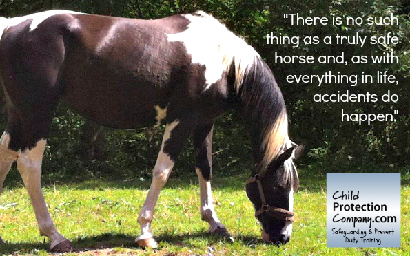 equestrian mediK pull quote