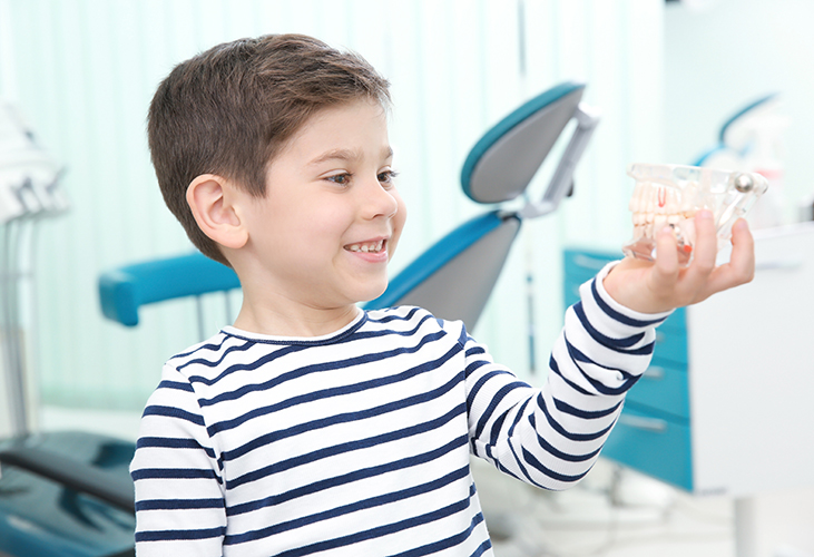 dental safeguarding levels explained