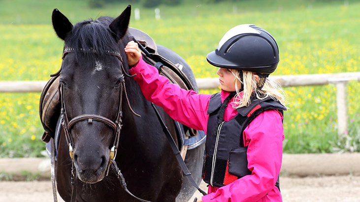 basic equestrian safeguarding course