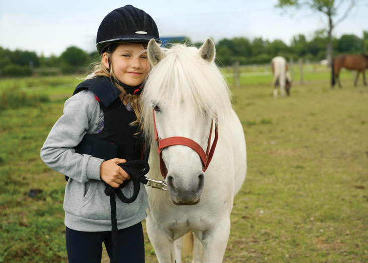 equestrian safeguarding training