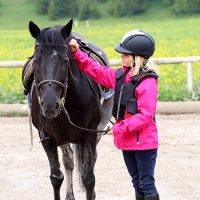 Equestrian Basic Safeguarding Awareness