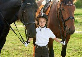 equestrian safeguarding courses